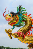 Drago cinese dorato Fotografia Stock Libera da Diritti