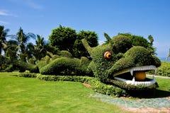 Drago dell'erba verde Fotografia Stock