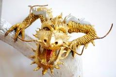 Drago dell'oro Fotografie Stock