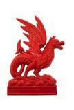 Drago di colore rosso di Lingua gallese Fotografia Stock Libera da Diritti