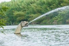 Drago di scultura di pietra del cinese tradizionale nel parco Immagini Stock