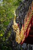 Drago intagliato Fotografia Stock