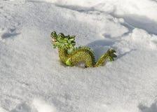 Drago nella neve Immagini Stock