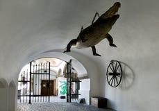 Drago - simbolo della città, corridoio di Città Vecchia, città Brno, Moravia, Immagine Stock