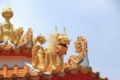 Drago sul tetto della porcellana Fotografia Stock