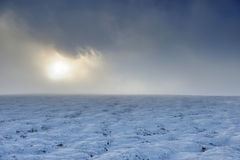 dragobrat横向山乌克兰冬天 库存照片