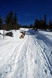 dragobrat横向山乌克兰冬天 库存图片