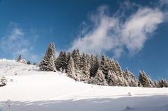 dragobrat χειμώνας της Ουκρανίας βουνών τοπίων Στοκ Φωτογραφίες