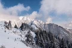 dragobrat χειμώνας της Ουκρανίας βουνών τοπίων Στοκ Εικόνα