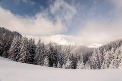 dragobrat χειμώνας της Ουκρανίας βουνών τοπίων Στοκ εικόνα με δικαίωμα ελεύθερης χρήσης