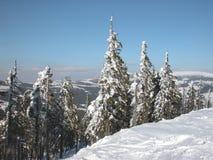 dragobrat krajobrazowa halna Ukraine zima Zdjęcia Royalty Free