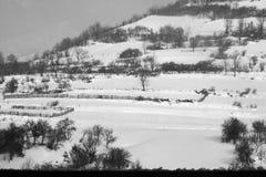 dragobrat krajobrazowa halna Ukraine zima Zdjęcie Royalty Free