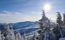 Dragobrat mountain Stock Photography