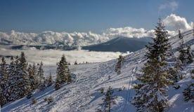Dragobrat Ukraina Alpejski sceniczny ośrodek narciarski Fotografia Stock