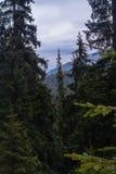 Dragobrat ukraine. Alpine scenic Ski resort. High mountain landscape Stock Image