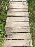 Dragoman Swamp reed and wooden path through it. Bulgaria Hot summer holiday vacations Royalty Free Stock Photo