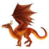 Dragon élégant d'isolement sur le fond blanc Photo libre de droits
