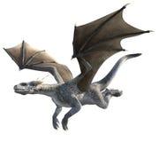 Dragon élégant sur le fond blanc illustration libre de droits