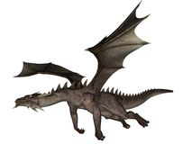 Dragon. 3D rendered flying dragon isolated on white background Royalty Free Stock Image