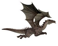 Dragon. 3D rendered flying dragon isolated on white background Royalty Free Stock Photography