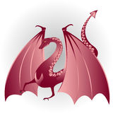 Dragon. Mythical dragon on a white background with shadow. Coloured illustration Royalty Free Stock Image