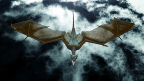 Dragon. Image of wings dragon flying Stock Images
