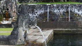 Dragon bali water Stock Images