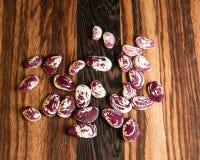 Dragon Beans Image libre de droits