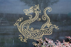 Dragon with black background Royalty Free Stock Photo