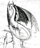 Dragon - black and white illustration. A black and white artwork hand made with ink stock illustration