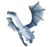 Dragon bleu Images stock