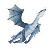 Dragon bleu volant à l'extérieur Photo stock