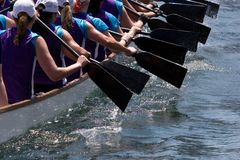 Dragon Boat. Racers paddling with their oars out of the water Stock Photography