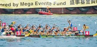 Dragon boat competition Stock Photography