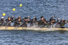 Dragon Boat Festival Competition - Dragon Boat Race tradicionais imagem de stock