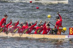 Dragon Boat Festival Competition - Dragon Boat Race tradicionais imagem de stock royalty free