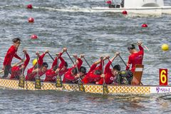 Dragon Boat Festival Competition - Dragon Boat Race tradicionais imagens de stock royalty free