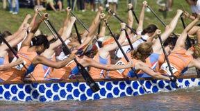 Dragon boat festival Royalty Free Stock Photos