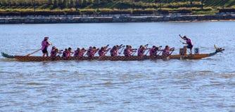Dragon Boat Paddlers dans la course photos libres de droits