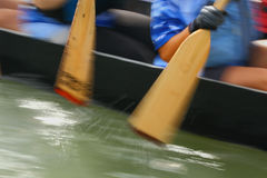 Dragon Boat Paddlers Royalty Free Stock Images
