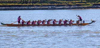 Dragon Boat Paddlers in Race Royalty Free Stock Photos