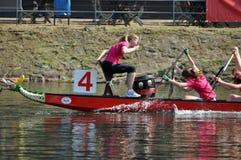 Dragon Boat Race Royaltyfri Fotografi