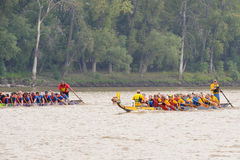 Dragon Boat Race Stock Afbeeldingen