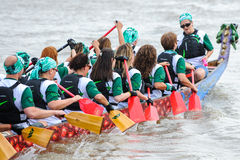 Dragon Boat Race Royaltyfri Foto