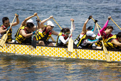 Dragon Boat Race Action Stock Images