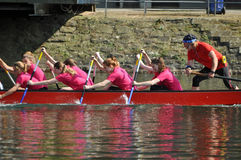 Dragon boat race Stock Image