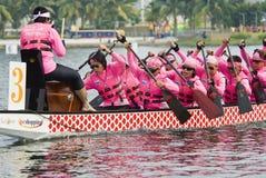 Dragon Boat Race Ladies Team Stock Photo