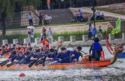 Dragon Boat Race On Dragon Boat Festival Royalty Free Stock Images