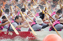 Dragon Boat Race, Singapore Stock Photography