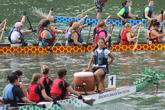 Dragon boat races Royalty Free Stock Photo